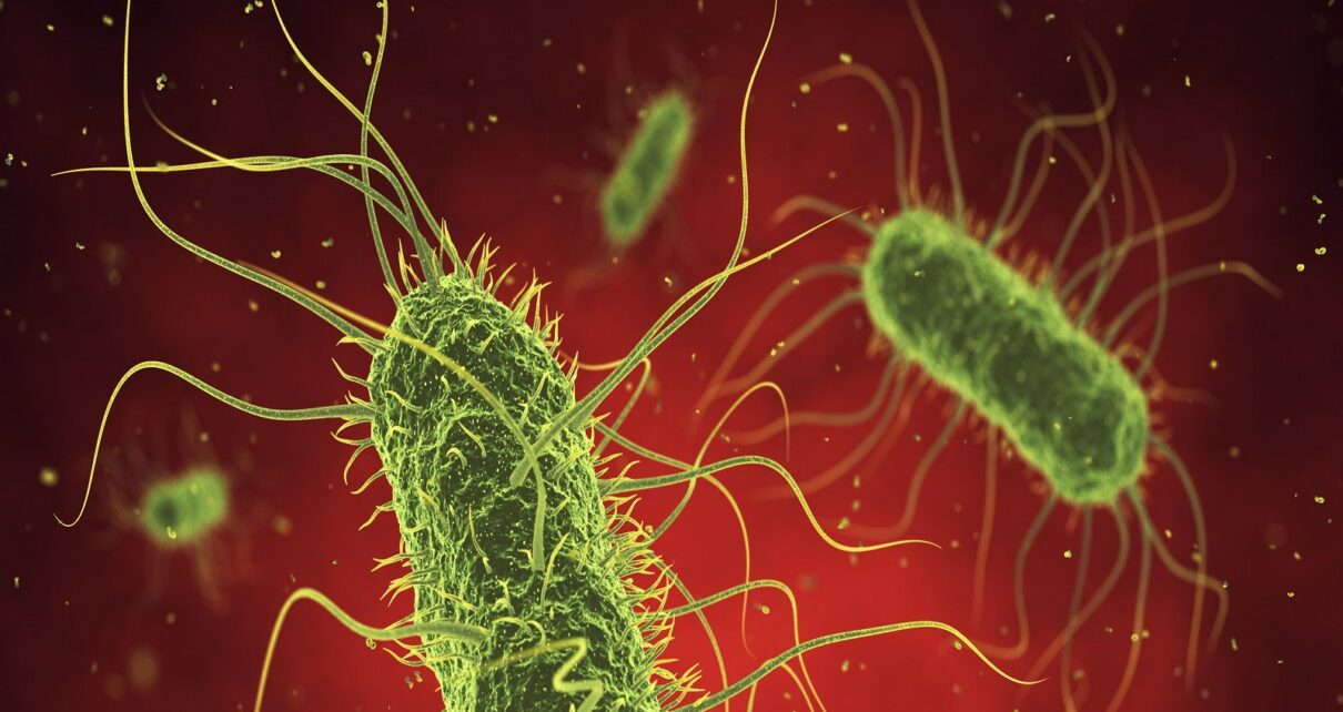 Health News bacterial disease will now get new treatment big thing revealed in research nav