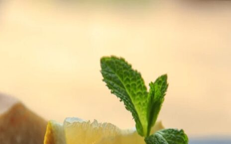 Home remedy to get rid of hair stickiness and oily hair mint and lemon hair care pra