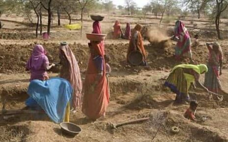 Only the service sector in rural India offset the carnage by adding over eight million jobs. ( Photo: Mint)