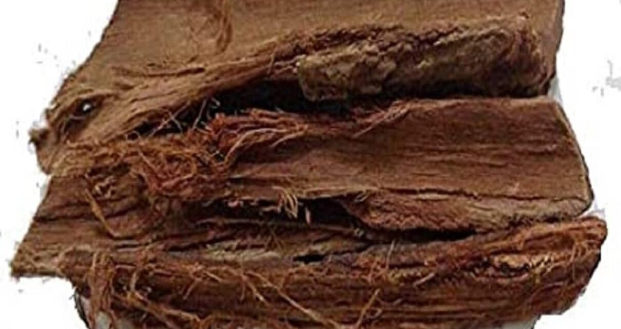 Health news Health Benefits Of Ashok Tree relieving period pain to anti aging pur