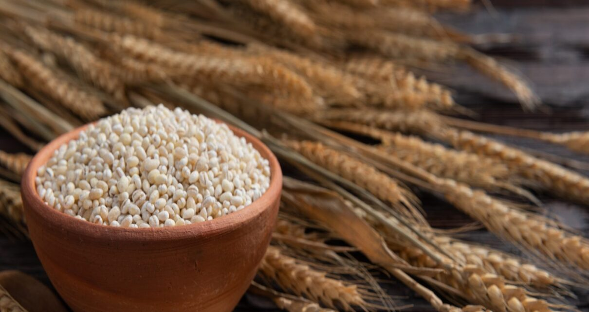Include these coarse grains in your plate iron deficiency will be complete nav